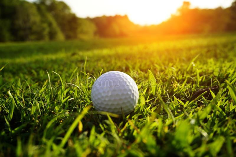 Blurred golf ball on green in beautiful golf course at sunset ba. Ckground royalty free stock photography