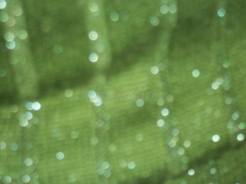 Blurred green background stock images