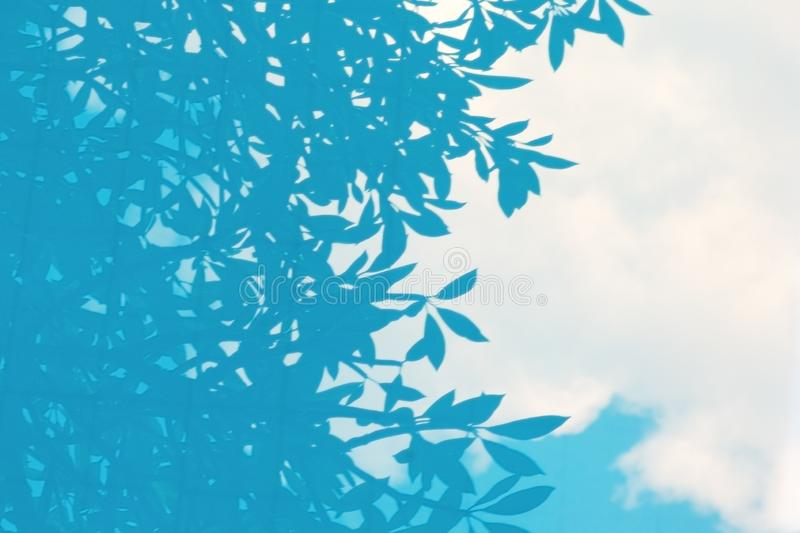 Blurred image with cloud and tree branches reflected in blue water. Defocused abstract background with outline of leaves royalty free stock images