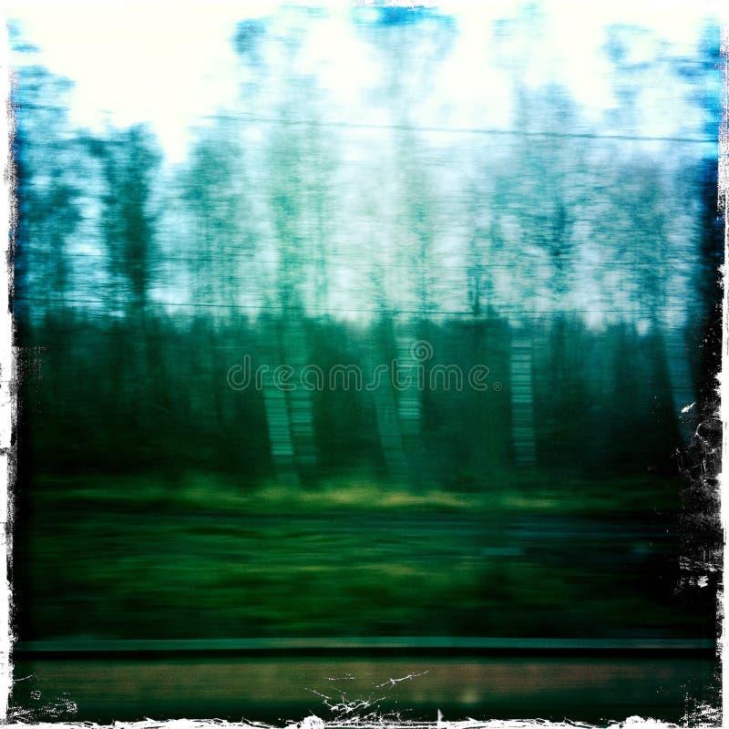 Blurred landscape taken from fast train