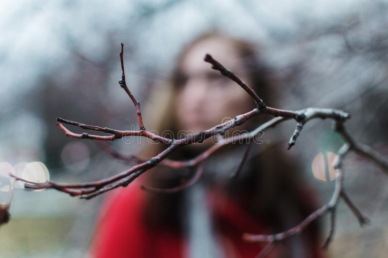 Blurred portrait of a woman behind the tree branch during blue hour stock photography