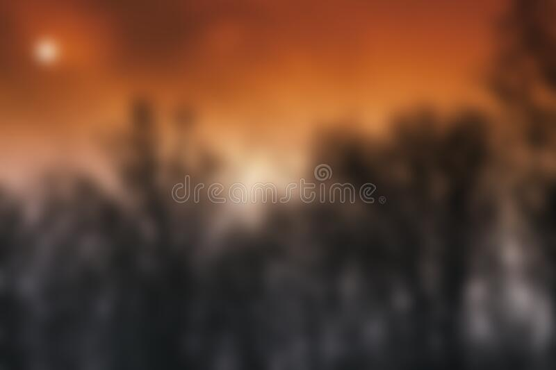 Blurred sunset picture with trees stock photo