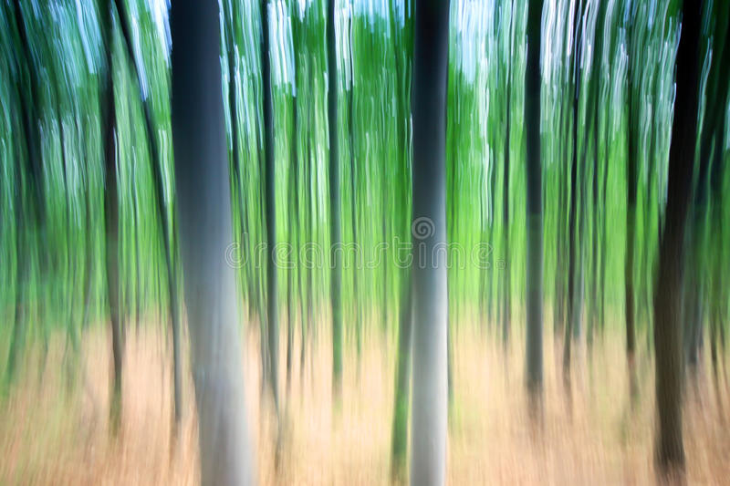 Download Blurred trees stock image. Image of countryside, rural - 29010793