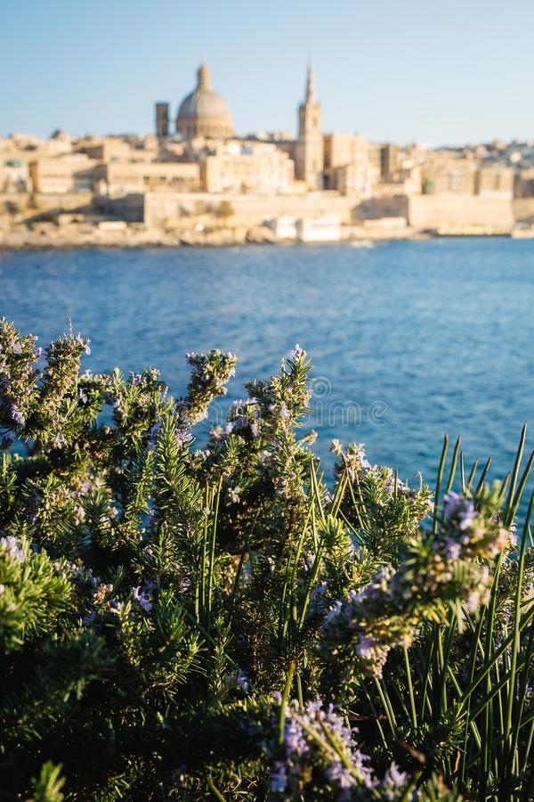 Blurred view of Valletta as seen from Tigne point in Sliema, late afternoon warm light royalty free stock photos