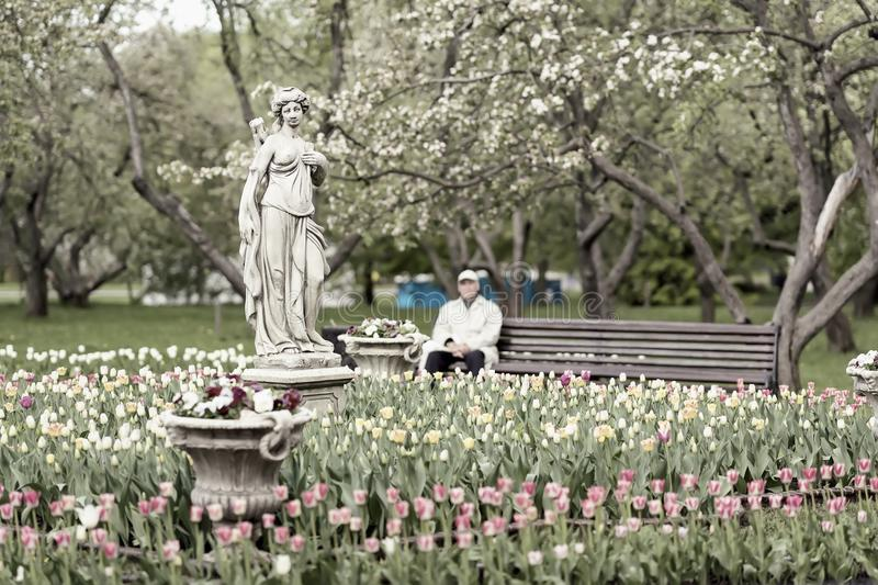 Blurred vintage image of unrecognizable elderly man, pensioner, lonely resting in blooming park. Selective focus. Spring stock photography