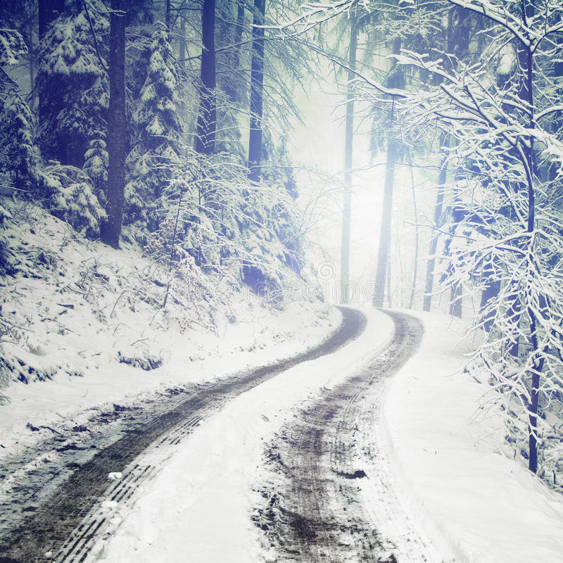 Blurry fantasy winter forest road stock photography