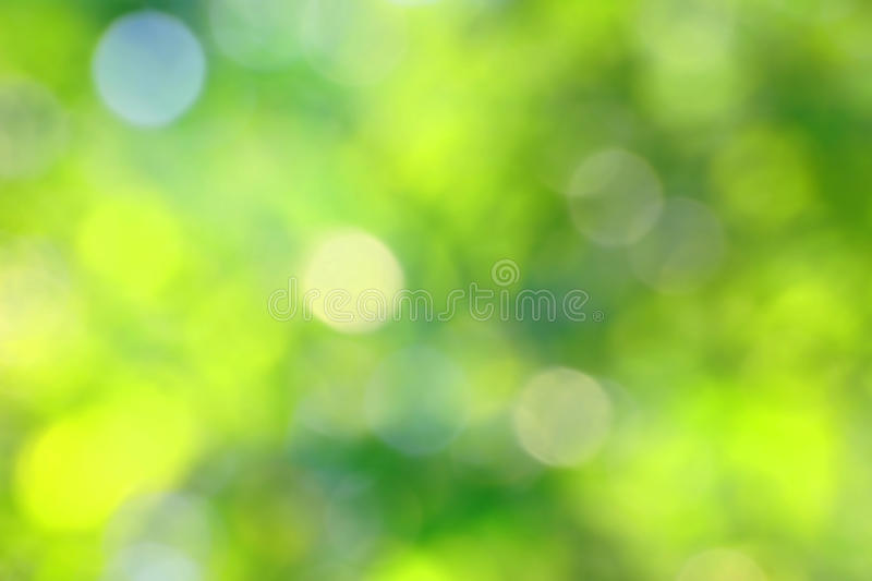 Blurry green background. With bokeh royalty free stock images