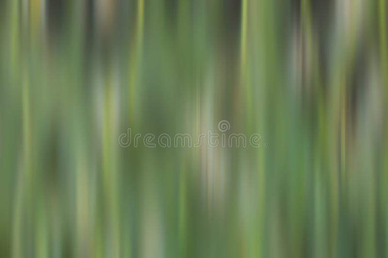 Blurry green background of grass texture. Digital abstract pattern background. Natural background of meadow in blur. Nature, plant, illustration, vector, macro royalty free stock photo