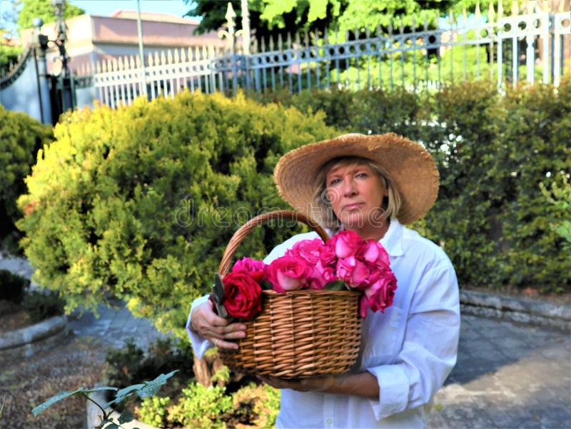 Blurry portrait middle aged woman with a bouquet of roses royalty free stock photos