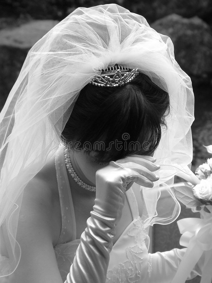Download Blushing Bride stock photo. Image of marriages, black, marriage - 45964