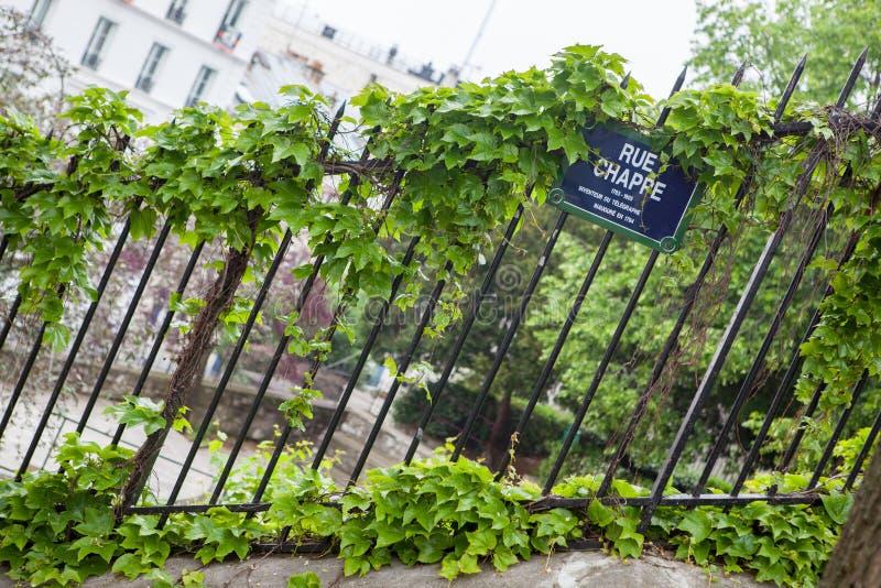 Bluszczy liście na żelaza ogrodzeniu fotografia stock