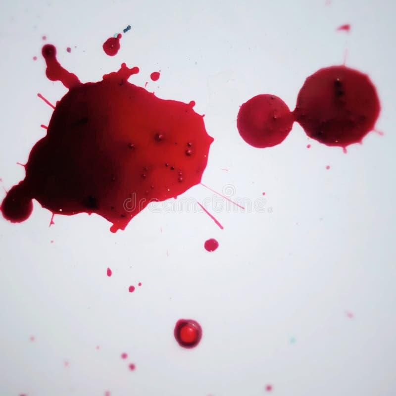 Blutfleck auf weißem Hintergrund stockfotos