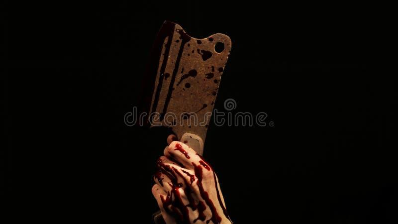 Blutiger Rusty Hatchet in der Dunkelheit lizenzfreie stockbilder