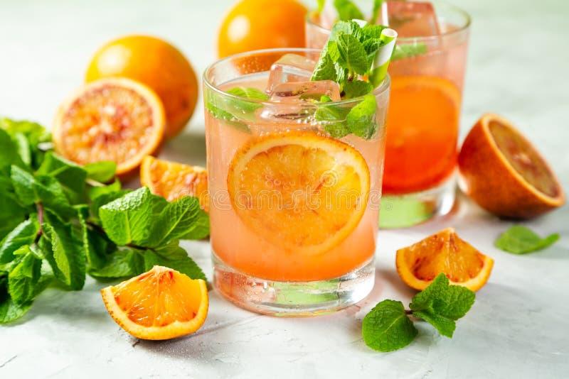 Blutiges Orangensaftgetränk und Bestandteile lizenzfreies stockfoto