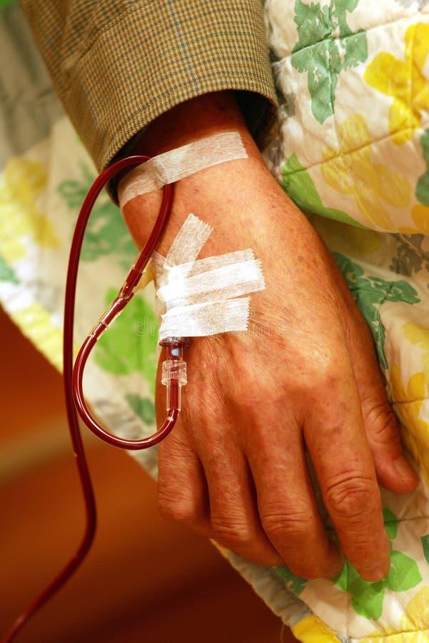 Bluttransfusion stockbilder