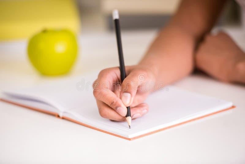 Blyertspenna för mulattflickainnehav arkivfoton