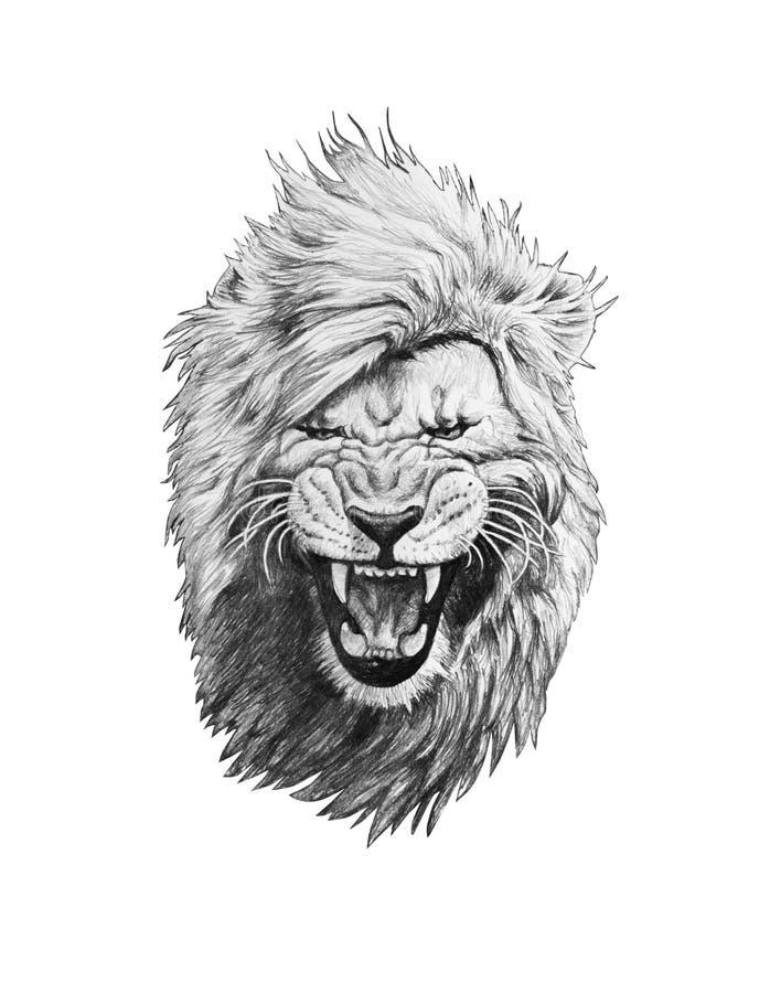Blyertspennateckning av ett lejonhuvud royaltyfri illustrationer