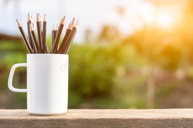 Blyertspennor i den vita kaffekoppen arkivbild