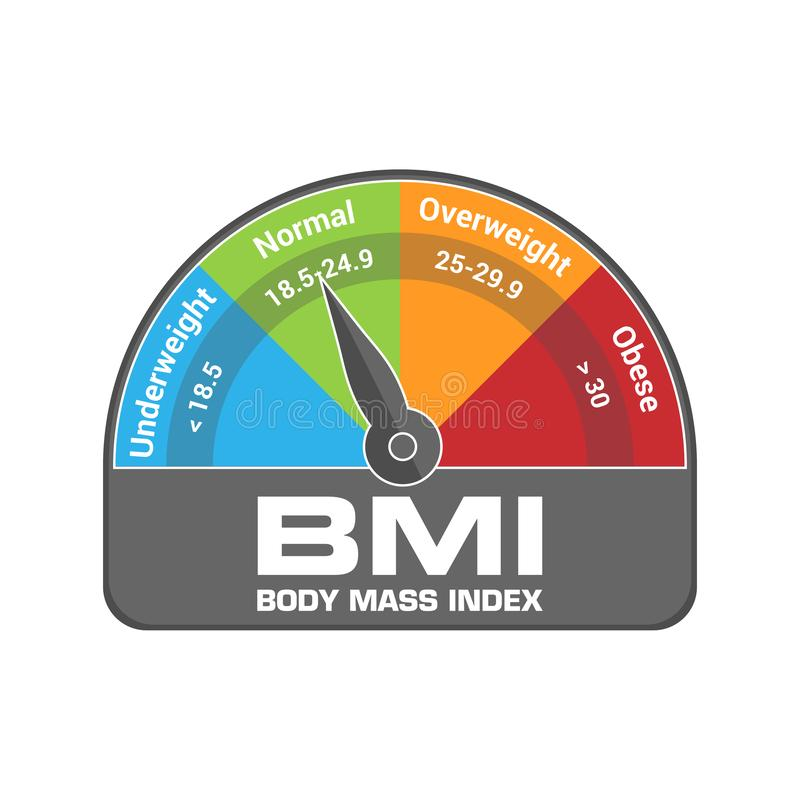 BMI Body Mass Index Calculate Illustration or Infographic Chart. Underweight, Normal, Overweight and Obese vector illustration
