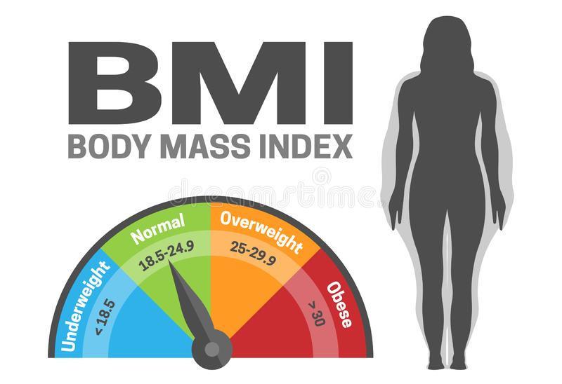 BMI Body Mass Index Infografisk vektor Illustration med Woman Silhouette från Normal till Obese Viktförlust eller Vinst royaltyfri illustrationer