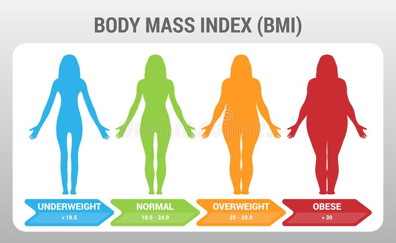 BMI Body Mass Index Vector Illustration with Woman Silhouette from Underweight to Obese. Obesity degrees with different weight. Poster stock illustration
