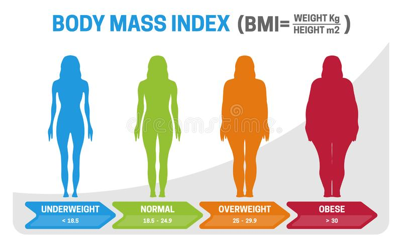BMI Body Mass Index Vector Illustration with Woman Silhouette from Underweight to Obese. Obesity degrees with different weight royalty free illustration