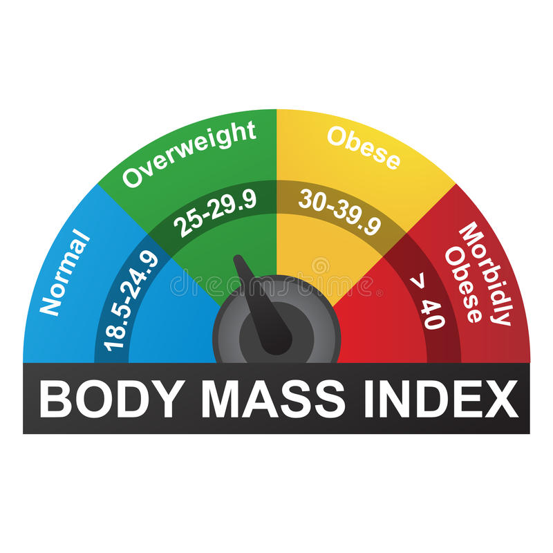 BMI eller Infographic för index för kroppmass diagram royaltyfri illustrationer