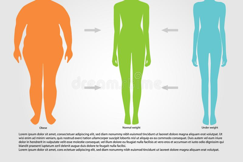 BMI, illustration.Woman silhouettes.Female body with different weight. BMI or Body Mass Index Infographic Chart.Vector illustration stock illustration