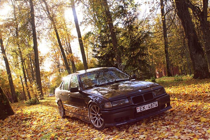 Bmw e36, осень, girlcar, мрачно. Bmw e36 1991, седан, дрифткар, осень в Латвии, мрачно симпатичное стоковое изображение без роялти