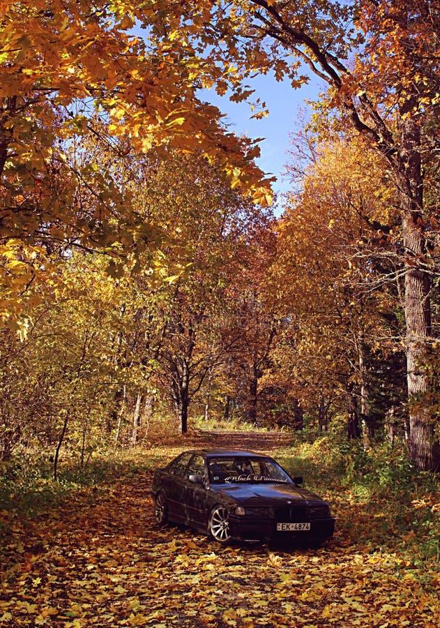 Bmw e36, autumn, girlcar, darkly royalty free stock photos