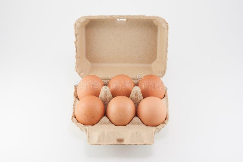 Boîte à oeufs - oeufs dans un carton d'oeufs sur le fond blanc photos libres de droits