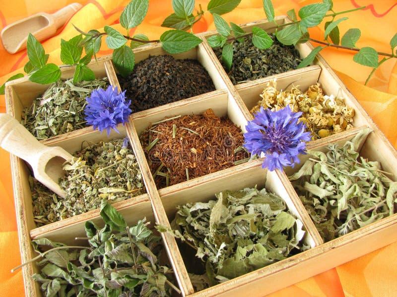 Boîte à thé avec les types desserrés de thé images stock