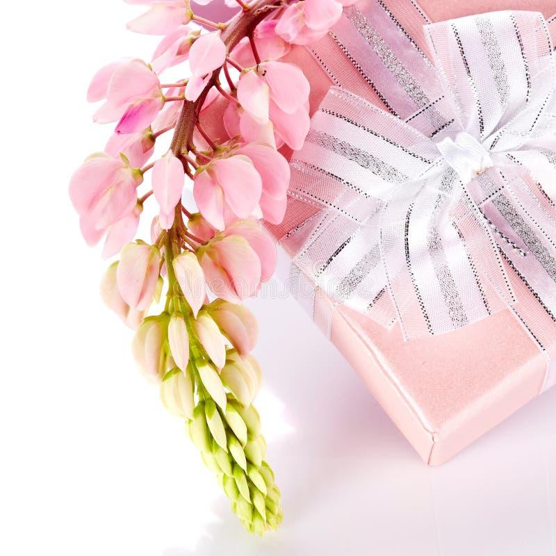 Boîte-cadeau et fleurs de loup. photo libre de droits
