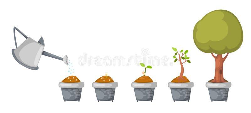Download Boîte D'arrosage Avec Le Vecteur De Cycle De Vie D'arbre Illustration de Vecteur - Illustration du lame, isolement: 45364180