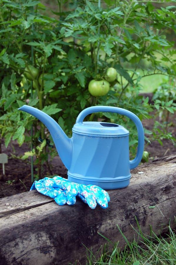 Boîte d'arrosage bleue de jardin avec des gants photographie stock libre de droits