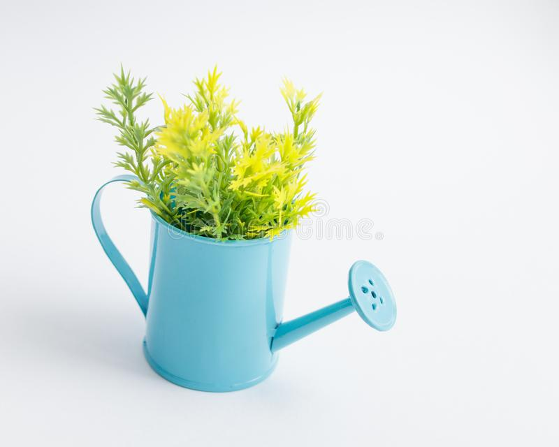 Boîte d'arrosage bleue de jouet avec les brins en plastique verts jaunes sur un fond blanc photos stock