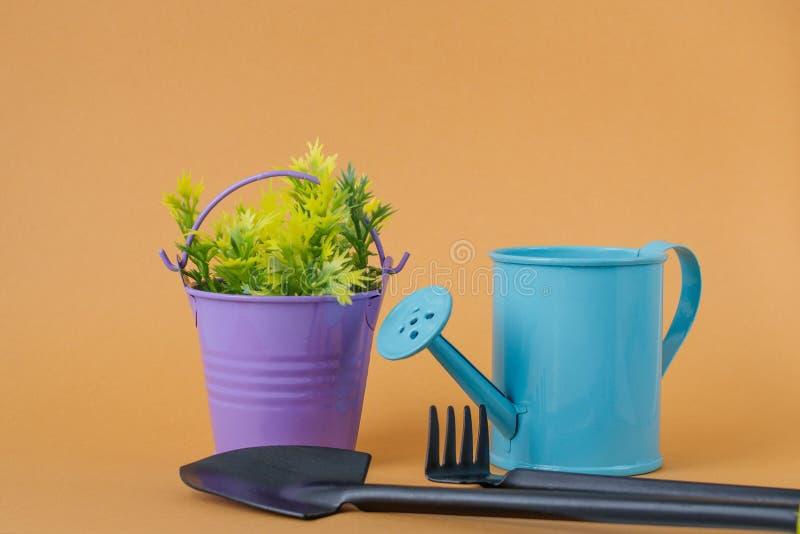 Boîte d'arrosage bleue de jouet, seau pourpre avec les brins vert jaunâtre, pelle et râteau sur un fond orange photographie stock