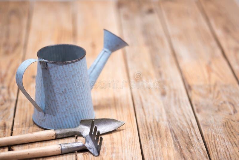 Boîte d'arrosage bleue de vintage et petits outils de jardin sur le backg en bois photo stock