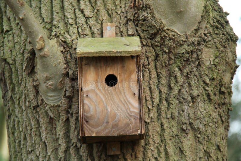 Download Boîte d'oiseau en bois photo stock. Image du animal, économie - 77152094
