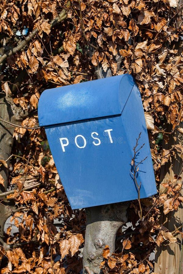 Boîte de lettre bleue sur la haie photo stock