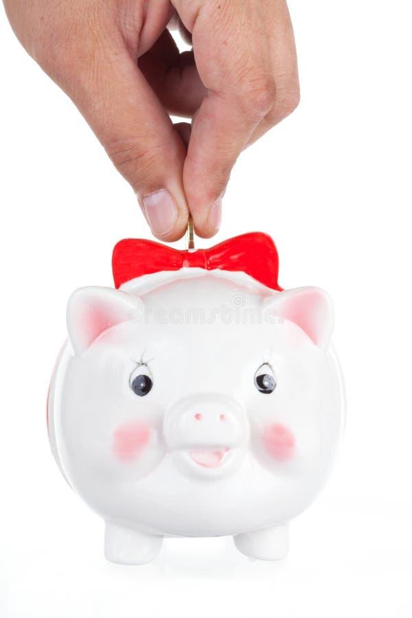 boîte de Porc-pièce de monnaie images libres de droits