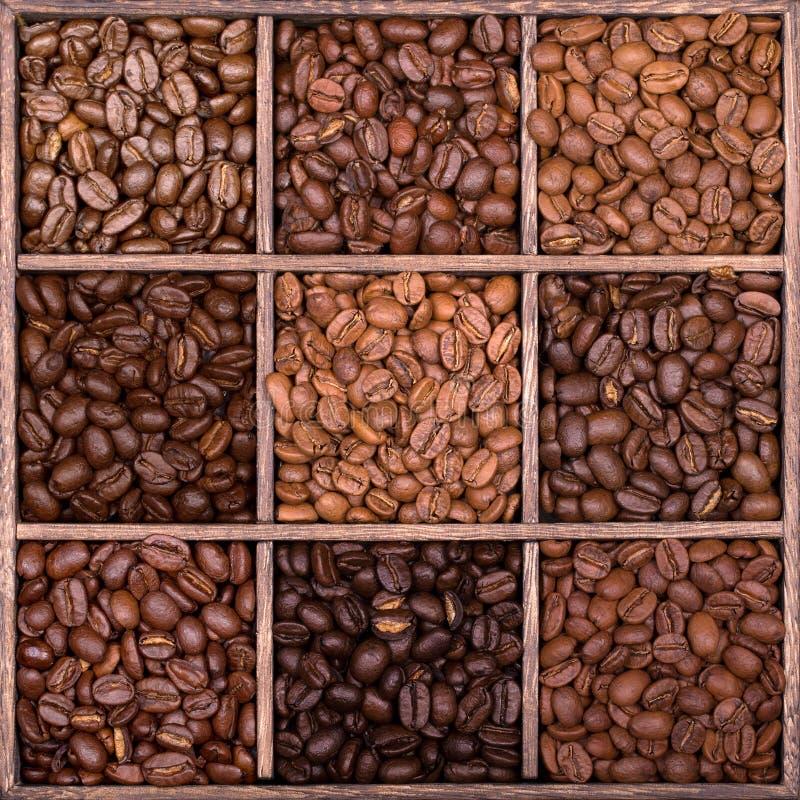 Boîte de rangement en bois remplie de grains de café image libre de droits