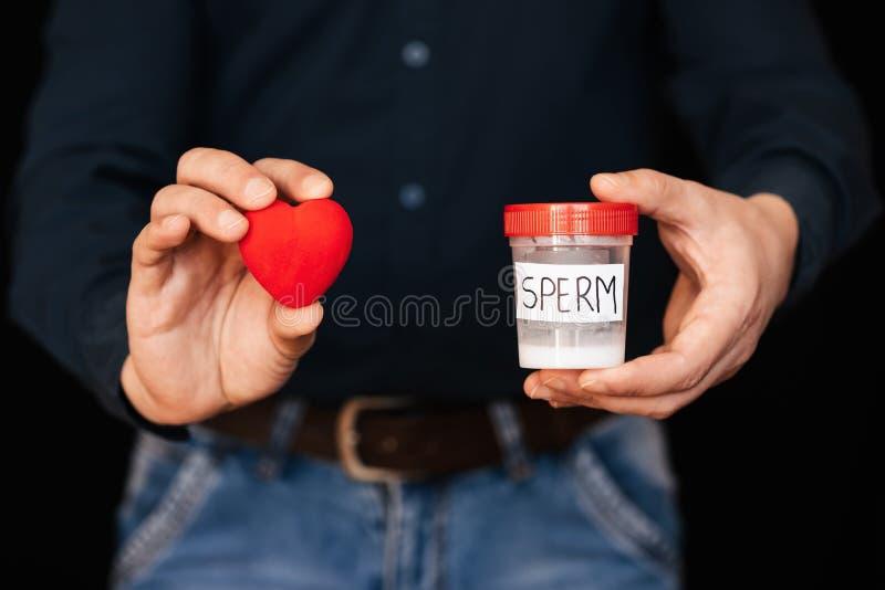 Boîte de sperme et un coeur rouge dans des mains d'un homme image stock