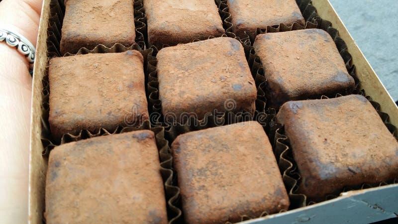 Boîte de truffes Bojo Bojo de vegan images libres de droits
