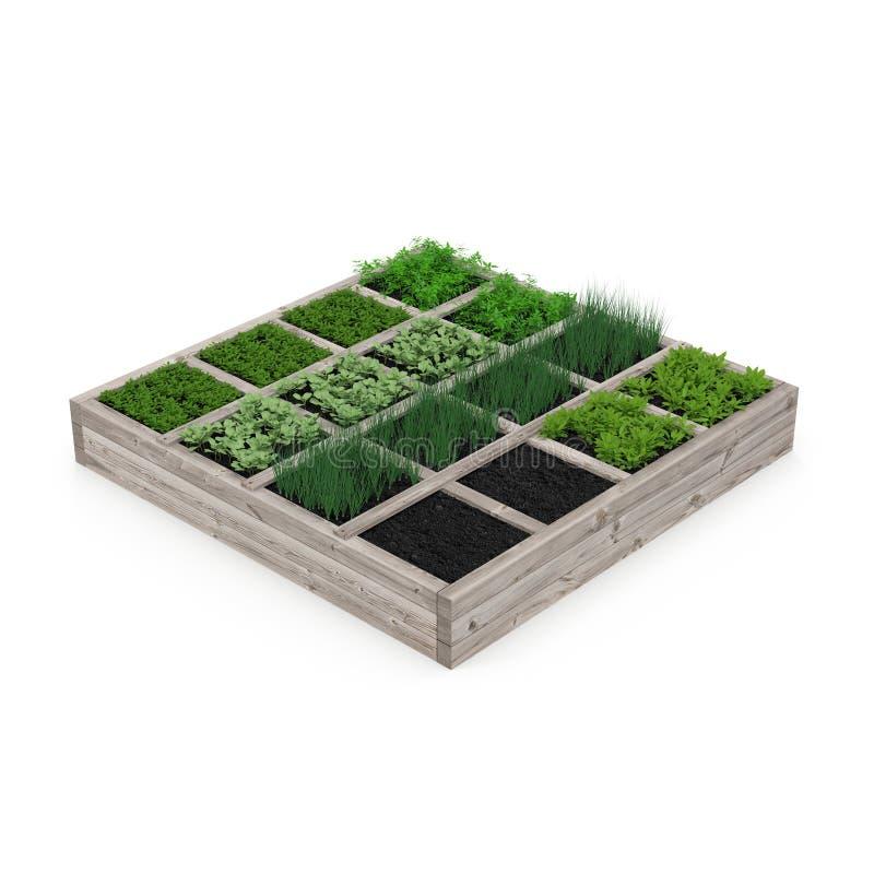 Boîte en bois avec un jeune jardin sur le blanc illustration 3D illustration de vecteur