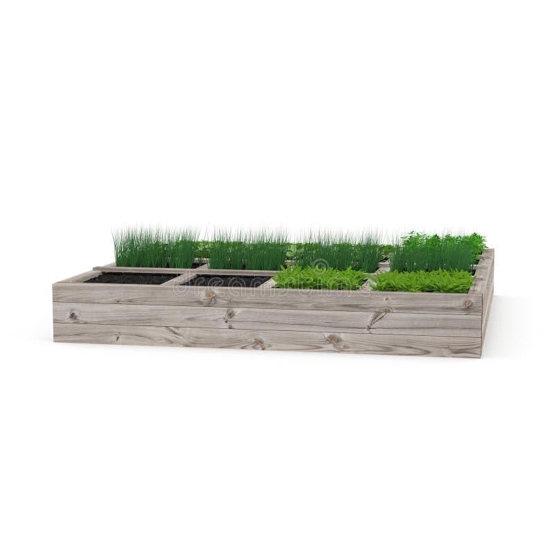 Boîte en bois avec un jeune jardin sur le blanc illustration 3D illustration libre de droits
