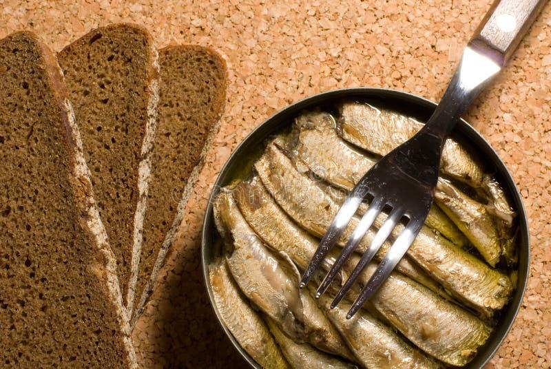 Boîte en fer blanc de sardine avec du pain photographie stock