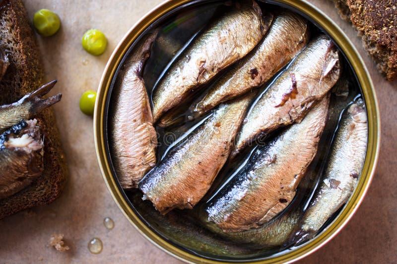 Boîte en fer blanc des esprots, sardines photo stock