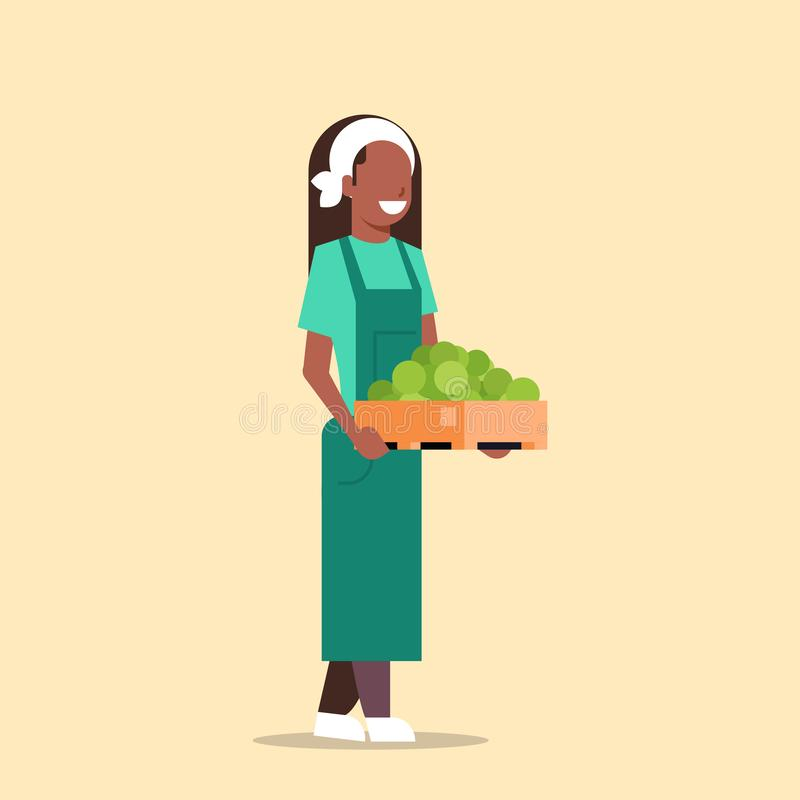 Boîte femelle de participation d'agriculteur avec la femme mûre verte d'afro-américain de pommes moissonnant l'eco agricole de illustration stock