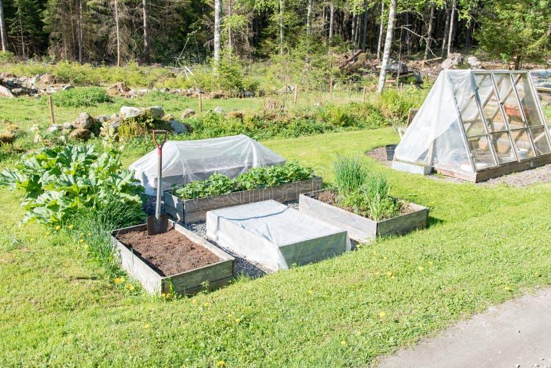Boîtes de culture et maison verte dans un jardin photographie stock